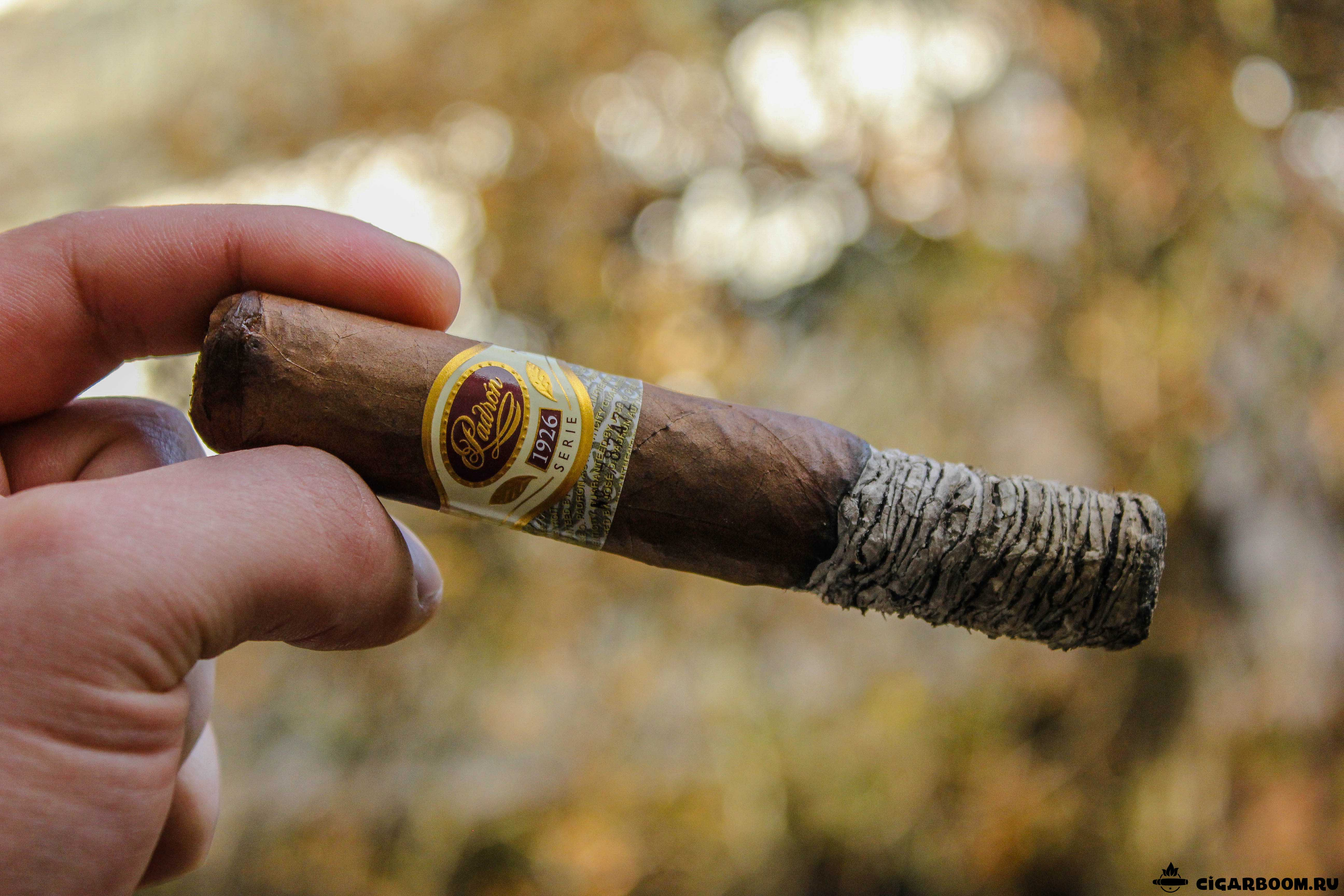 Padron 1926 Natural Robusto_4