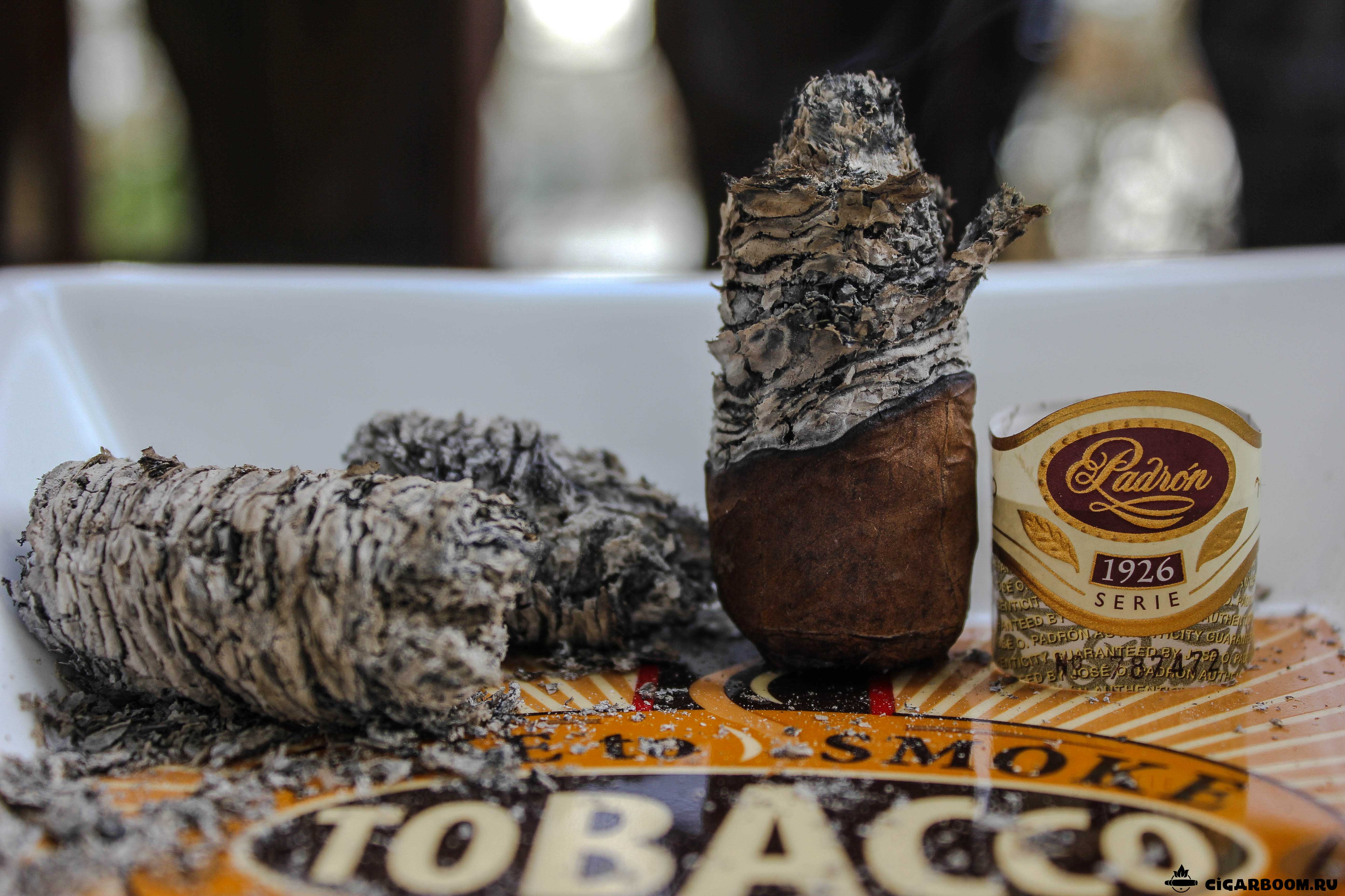 Padron 1926 Natural Robusto_6