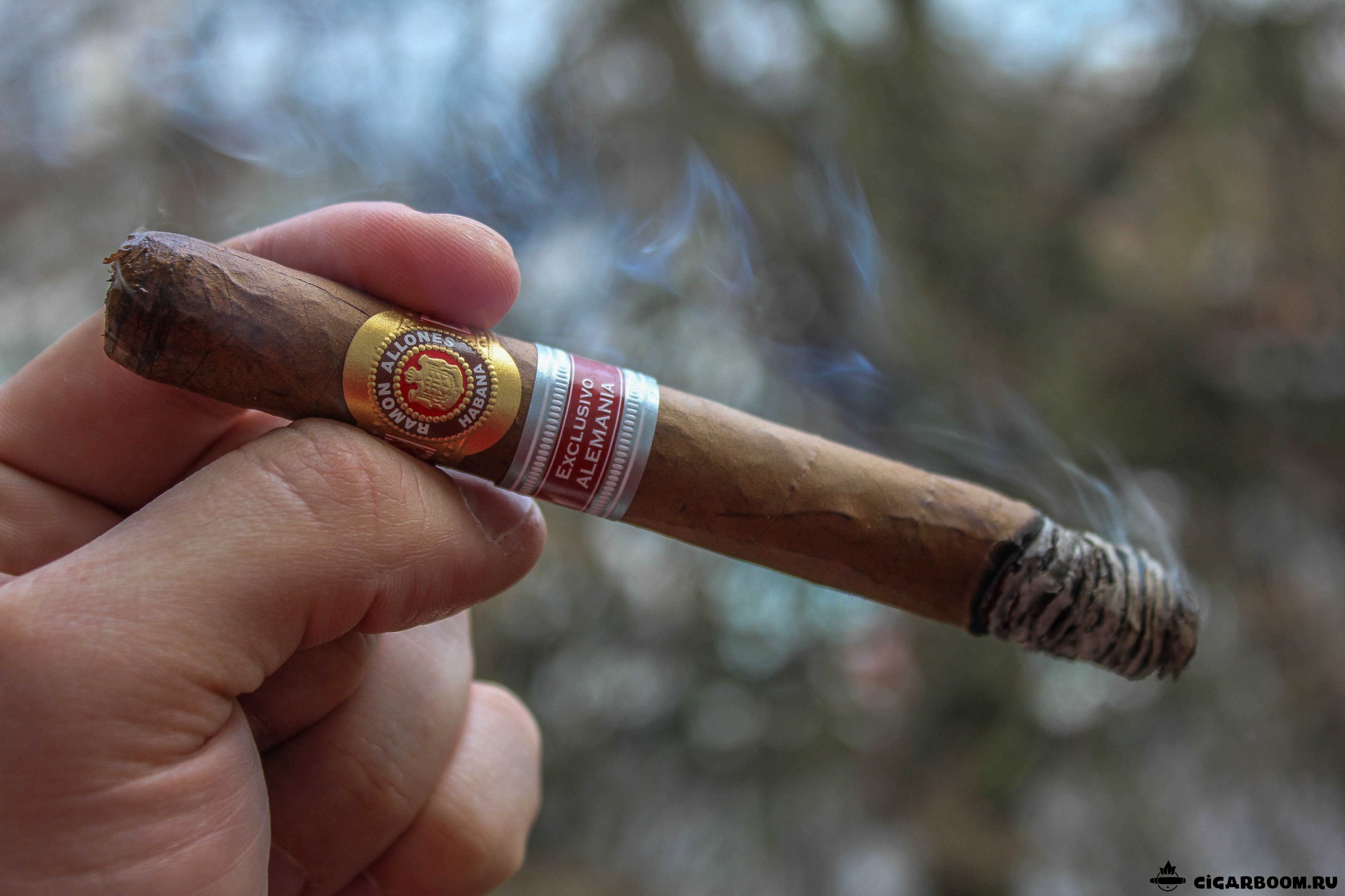 Ramon-Allones-8-9-8-Edition-Regional-Alemania-2014_4