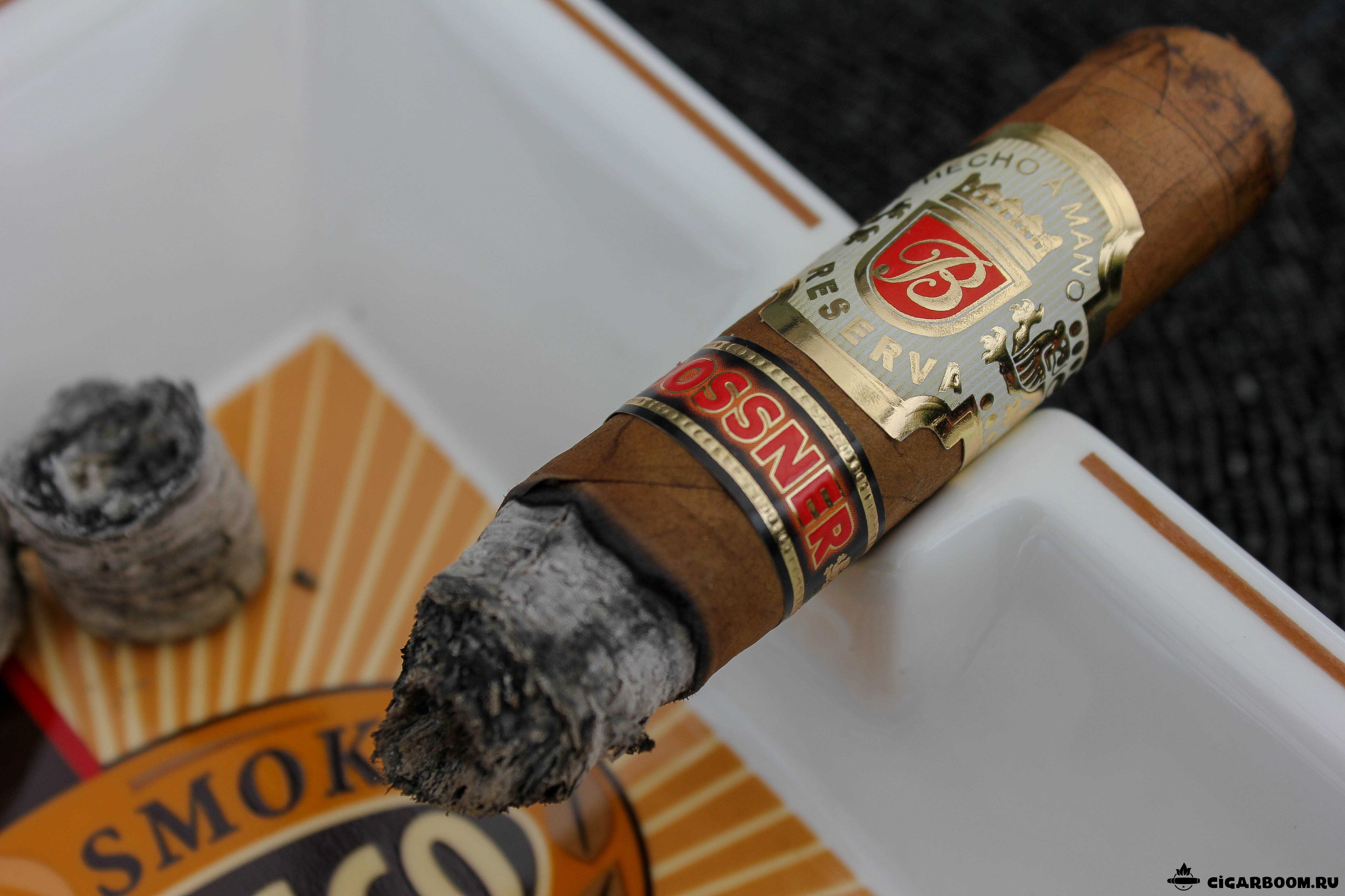 Bossner-Robusto-5