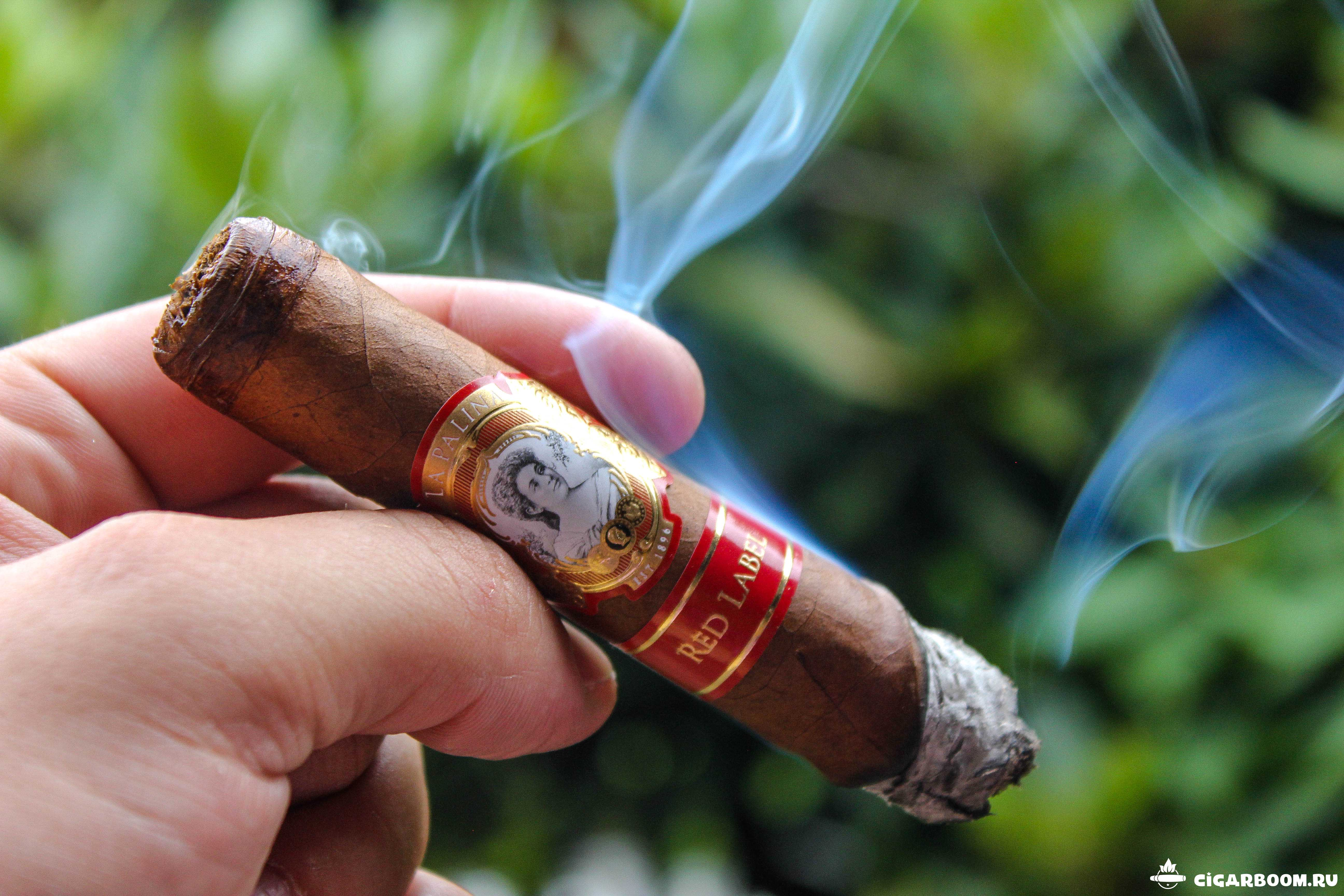 La-Palina-Red-Label-Robusto_3